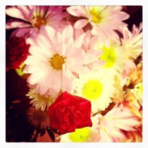 Fleurs Of A Bouquet